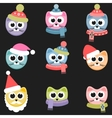 Cats with winter clothing vector image
