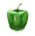 green pepper logo design template vector image
