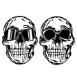 Skull and skull in sunglasses vector image
