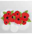 the remembrance poppy - poppy appeal vector image