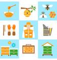 beekeeping honey flat icons set vector image