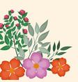 spring floral decoration image vector image