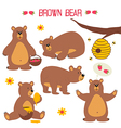 set of isolated brown bear vector image