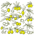 set of olive branch vector image