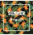 Tropical Background with Summer in the City vector image