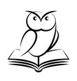 Cartoon of owl and book - symbol of wisdom vector image