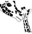 Giraffe family coloring vector image