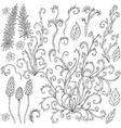 doodle curls vector image