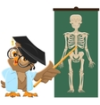Owl teacher Anatomy Lesson the study of the human vector image
