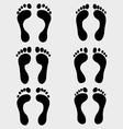 human feet vector image