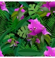 tropical plants painting seamless background vector image