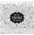 Big set of vintage elements vector image