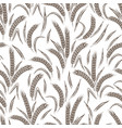 ears of wheat seamless pattern vector image