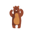 cheerful grizzly bear standing with paws up vector image