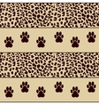 leopard background with paws vector image