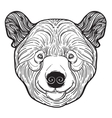 Animal teddy Bear head print for adult anti stress vector image