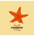 starfish beach sand icon vector image