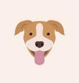 american pitbull terrier portrait vector image