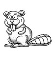 cartoon image of beaver vector image