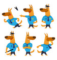 police dog funny character in uniform with badge vector image