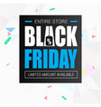 banner entire store black friday image vector image