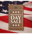 Presidents Day sale background vector image