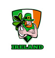 ireland rugby background vector image vector image