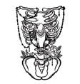 skeleton ribs bird and flowers vintage vector image
