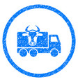 cow transportation rounded grainy icon vector image