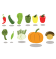 Group of Vegetables part 2 vector image