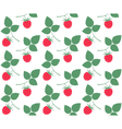 Raspberries Pattern vector image