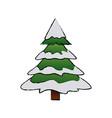 cute pine tree christmas decoration ornament image vector image
