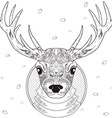 deer line art vector image