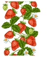 Seamless pattern with red strawberries Decorative vector image