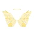 Golden wing vector image