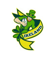 irish rugby background vector image