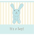 baby boy announcement card vector image