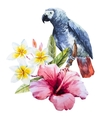 Watercolor hibiscus flower and parrot vector image