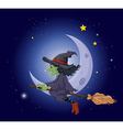A witch riding on a broomstick floating near the vector image vector image