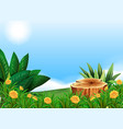 scene with stump tree in flower field vector image