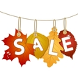 Hanging sale with autumn leaves vector image vector image