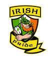 irish rugby shield vector image vector image