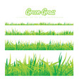 green grass of different heights vector image