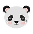 panda bear cartoon vector image