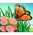 A big orange butterfly at the garden vector image vector image
