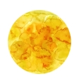 Yellow gold watercolor background vector image