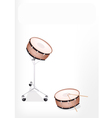 Two Beautiful Snare Drum on White Background vector image vector image