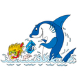 photos for a great white shark vector image vector image