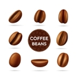 Coffee beans concept set vector image