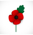 poppy and flower vector image